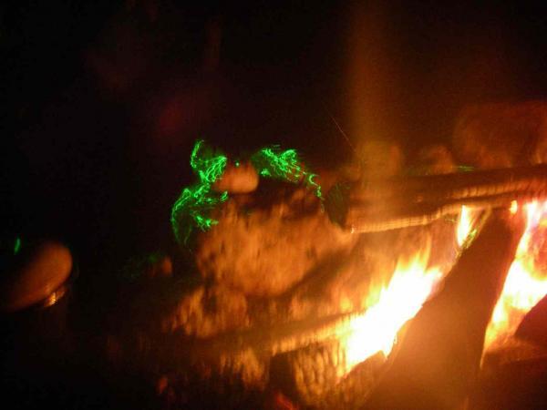 Grüne Drachen am Feuer