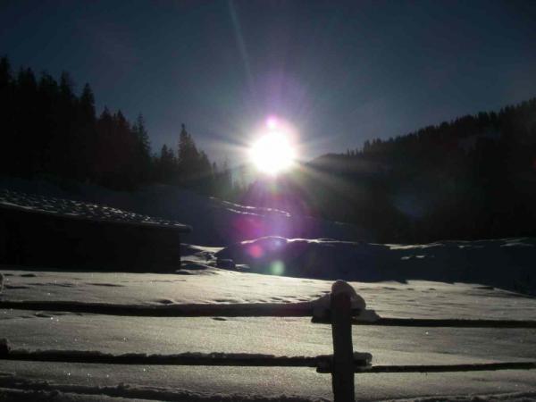 Nur noch kurze Zeit da, die tiefstehende Wintersonne