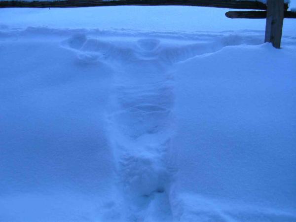 Menschen-Schnee-Druck