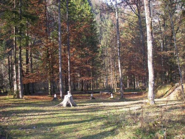 Der Schwitzhüttenplatz...