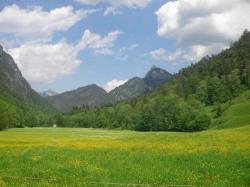 Frühlingswiese mit Rabensteinhorn