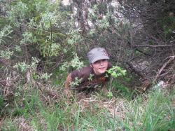 Luca im Busch