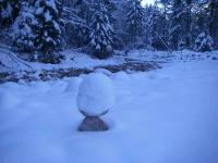 Schneehauben-Stoamandl