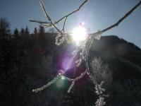 Die Sonne lugt hervor