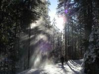 Schneestaublawine